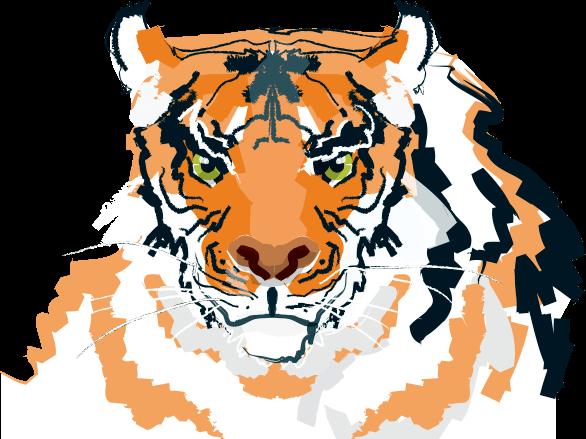 Tiger logo - National Involvement Network